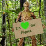 Regenwald schützen